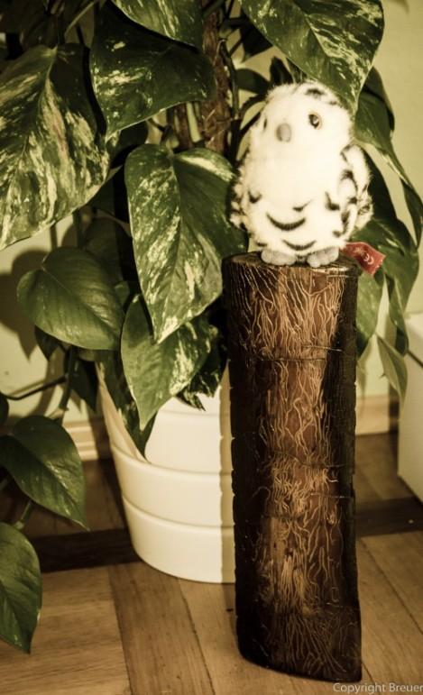Holzscheite angekokelt- eine tolle Dekoration