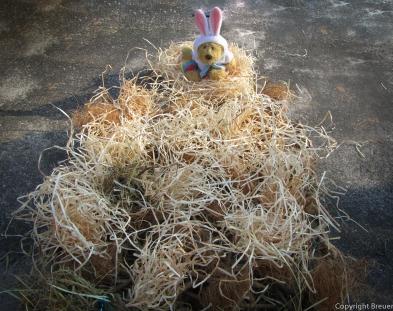 Der Osterhase wollte schon mal gucken ;)