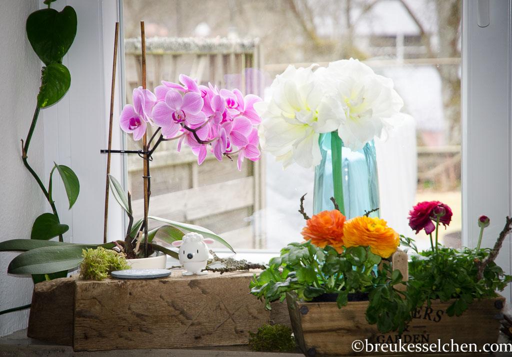 Flowerpowerfebruar_Germaninteriorblogger_Blumen_Lächeln (13)