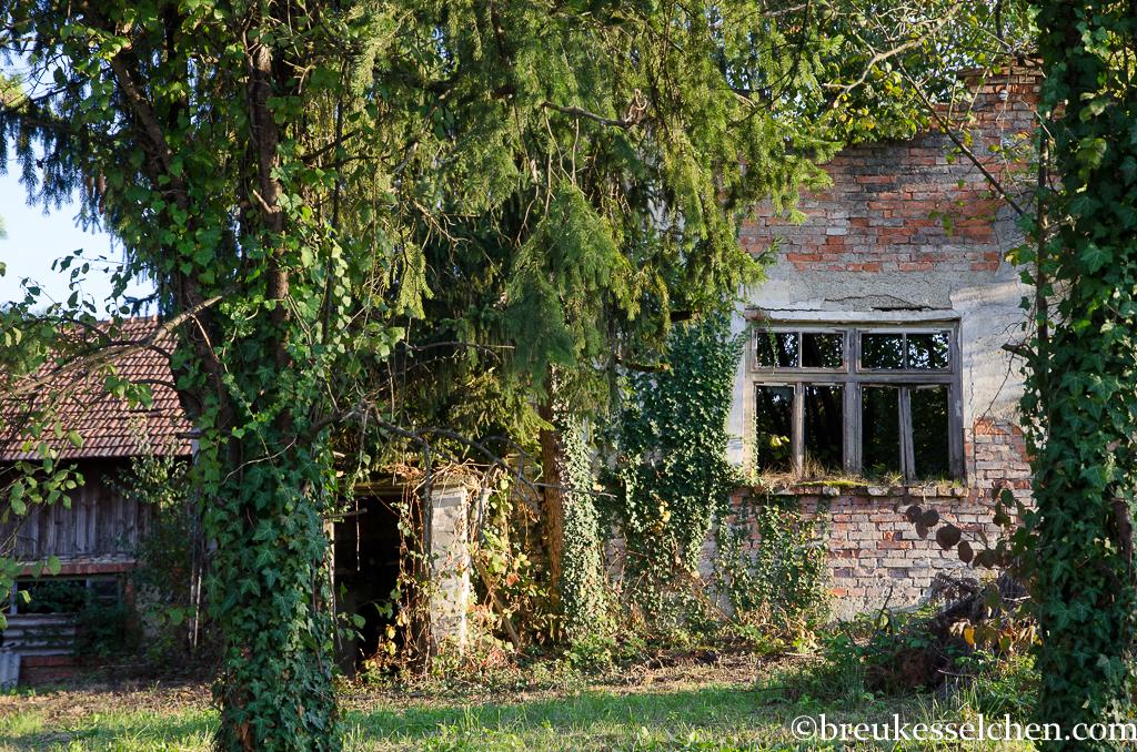 Urige alte Häuser gibt es hier viele.