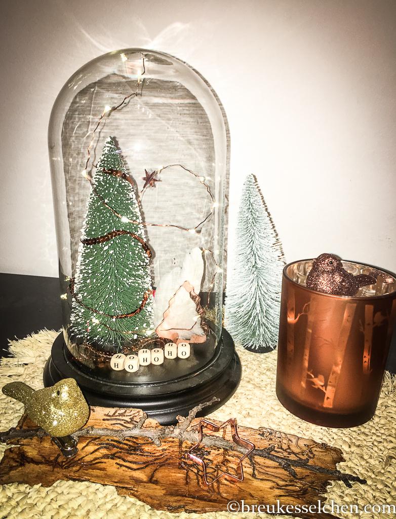 2.DIY Deko mit Glasglocke und Lichterkette (6)